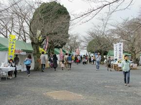 shiro22.jpg