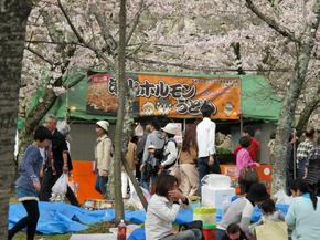 horumonsakura7.jpg