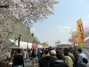 hanami4-45.jpg